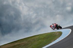 The ideal place: Phillip Island